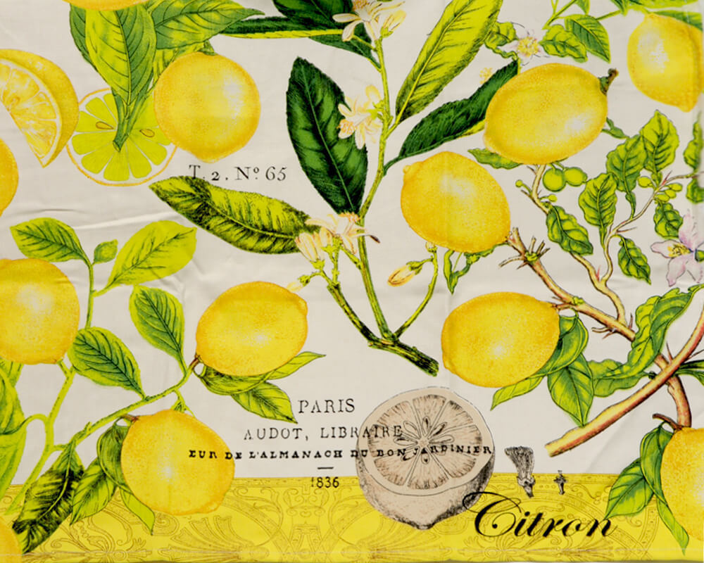 Apron By Michel Design Works New York Lemon Basil Renio Clark